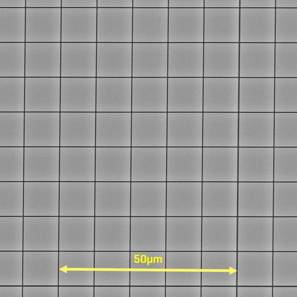 silicon-grid