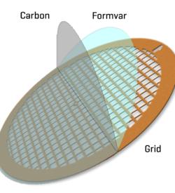 Formvar/Carbon film on Gold 200 mesh (25)
