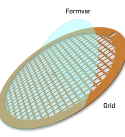 Formvar film on Nickel 100 mesh (25)