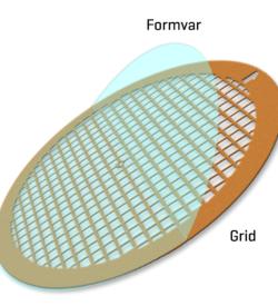 Formvar film on Copper 400 mesh (25)