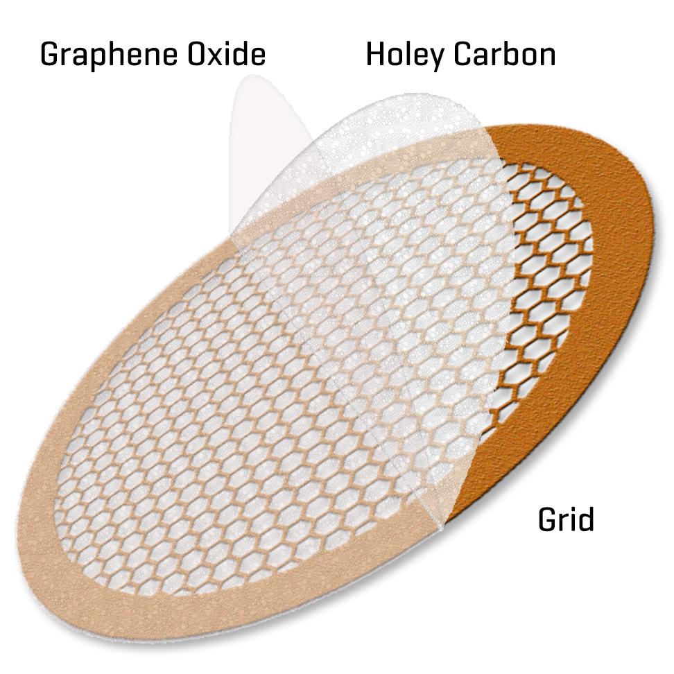Graphene oxide on hexagonal Holey Copper 300 mesh (10)