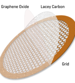 Graphene oxide on hexagonal Lacey Copper 300 mesh (50)