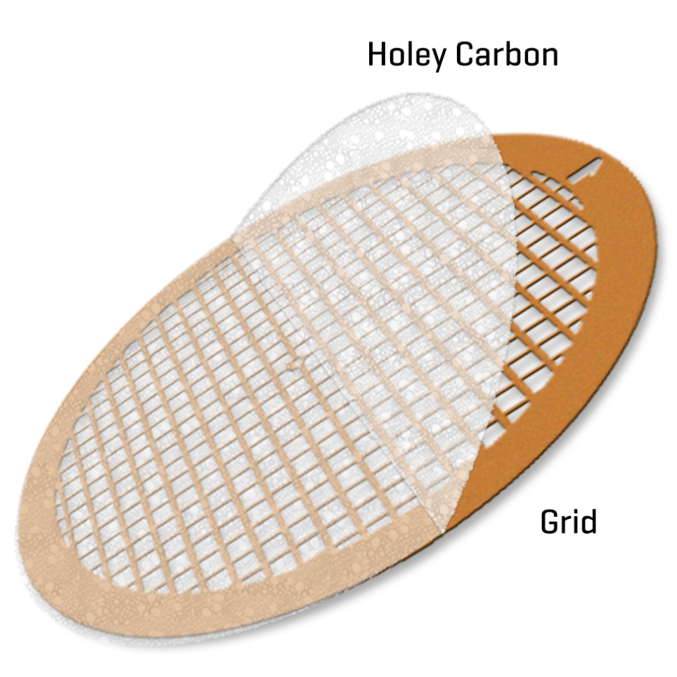 Holey Carbon film on Nickel 200 mesh (100)