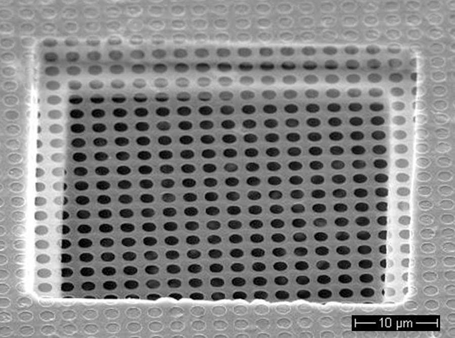 Quantifoil R1.2/1.3 400 mesh nickel grids (50)