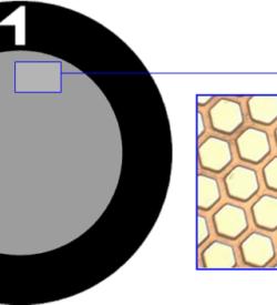 TG1000HH Gold   Fine hex TEM grid, pack of 50